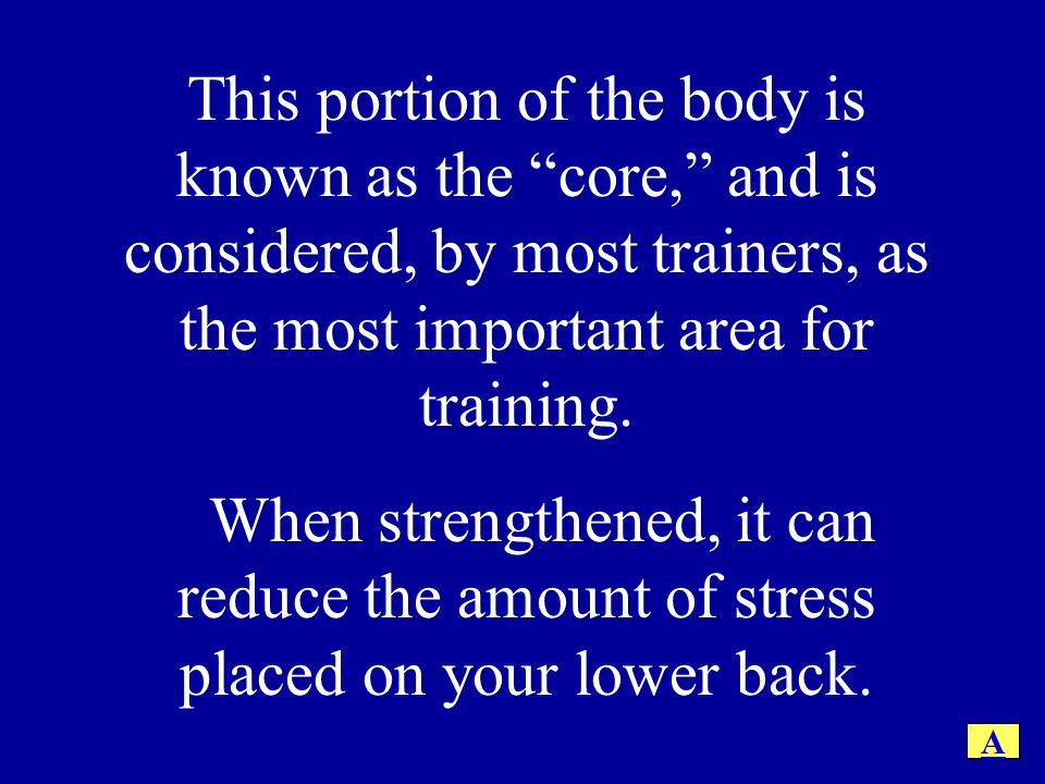This portion of the body is known as the core, and is considered, by most trainers, as the most important area for training.