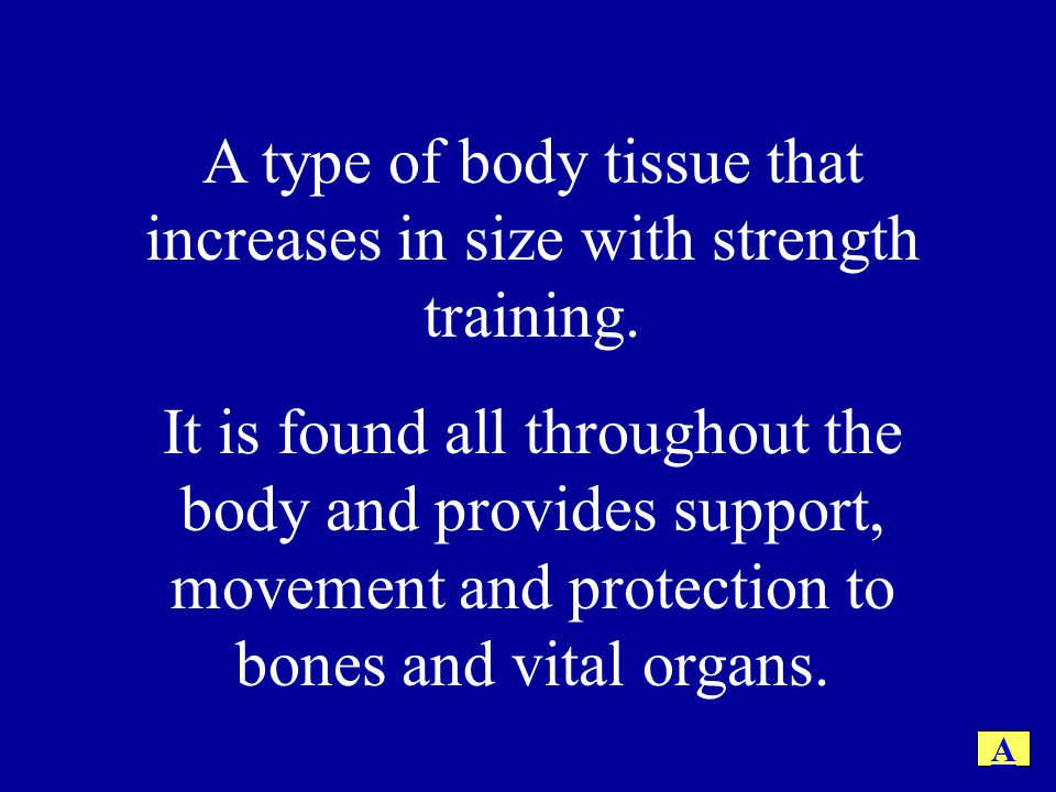 A type of body tissue that increases in size with strength training.