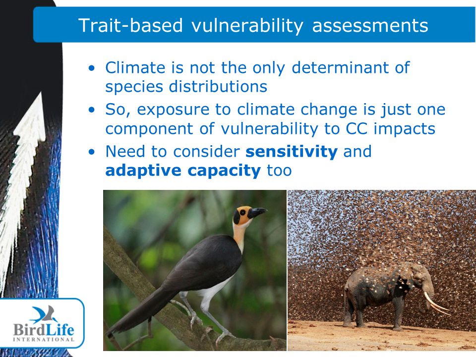 Trait-based vulnerability assessments