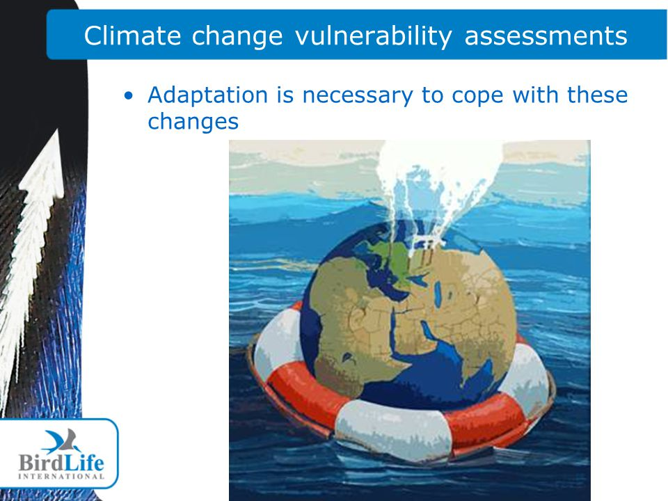 Climate change vulnerability assessments