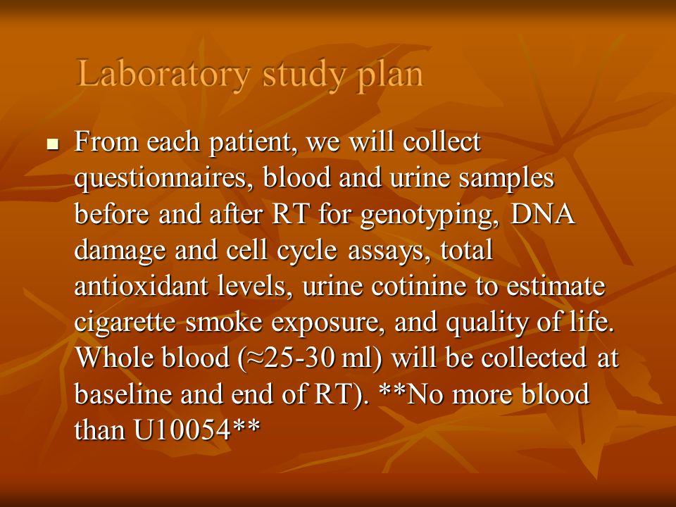 Laboratory study plan