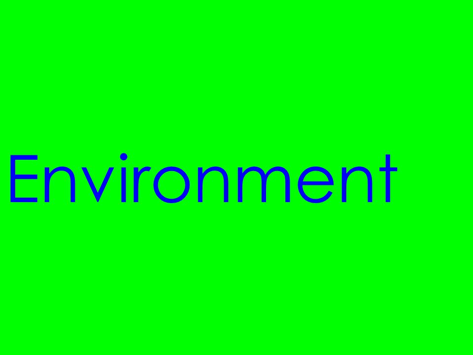 Environment LOW AFFECTIVE FILTER!