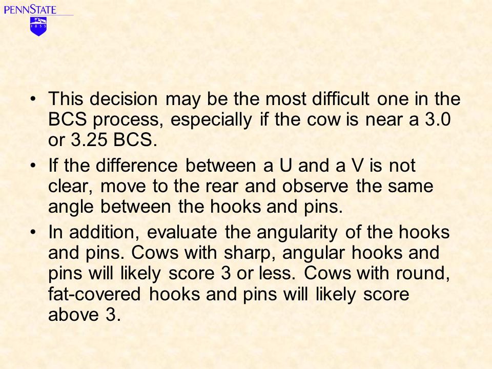 This decision may be the most difficult one in the BCS process, especially if the cow is near a 3.0 or 3.25 BCS.