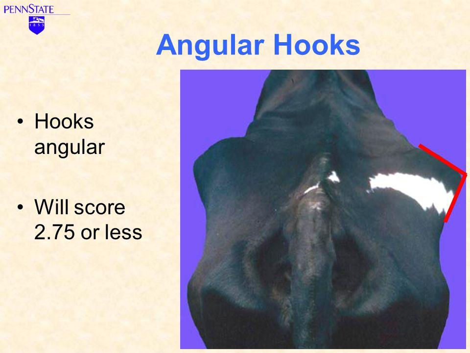 Angular Hooks Hooks angular Will score 2.75 or less