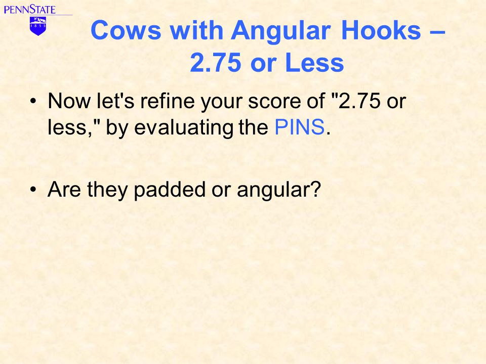 Cows with Angular Hooks – 2.75 or Less