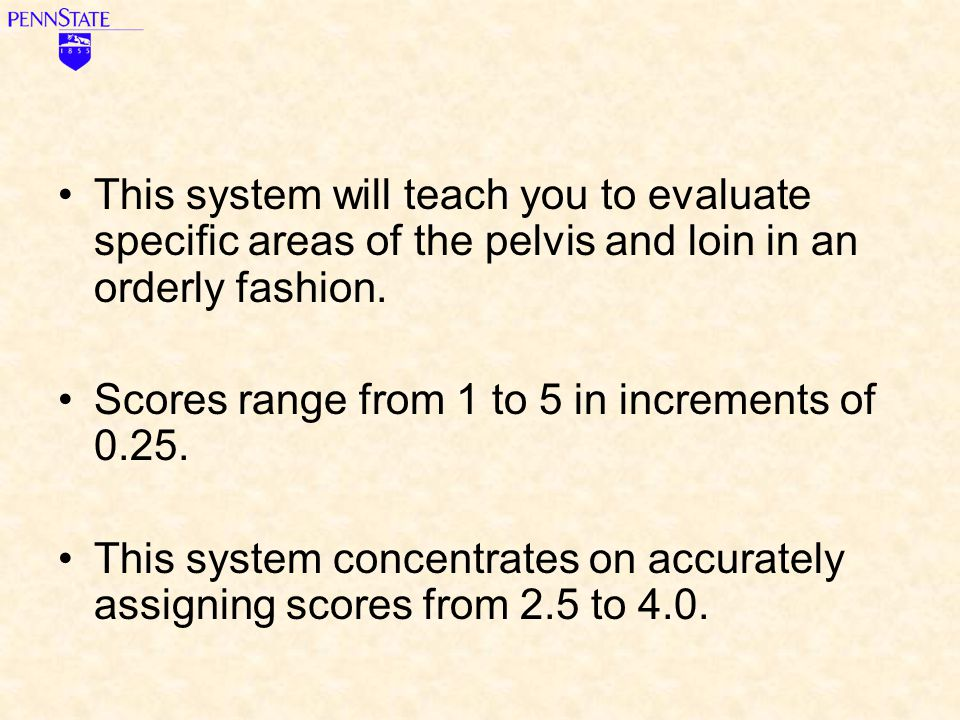 This system will teach you to evaluate specific areas of the pelvis and loin in an orderly fashion.
