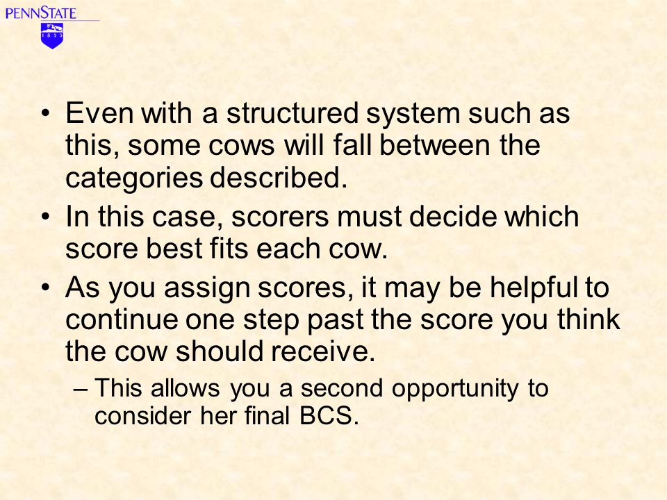 In this case, scorers must decide which score best fits each cow.
