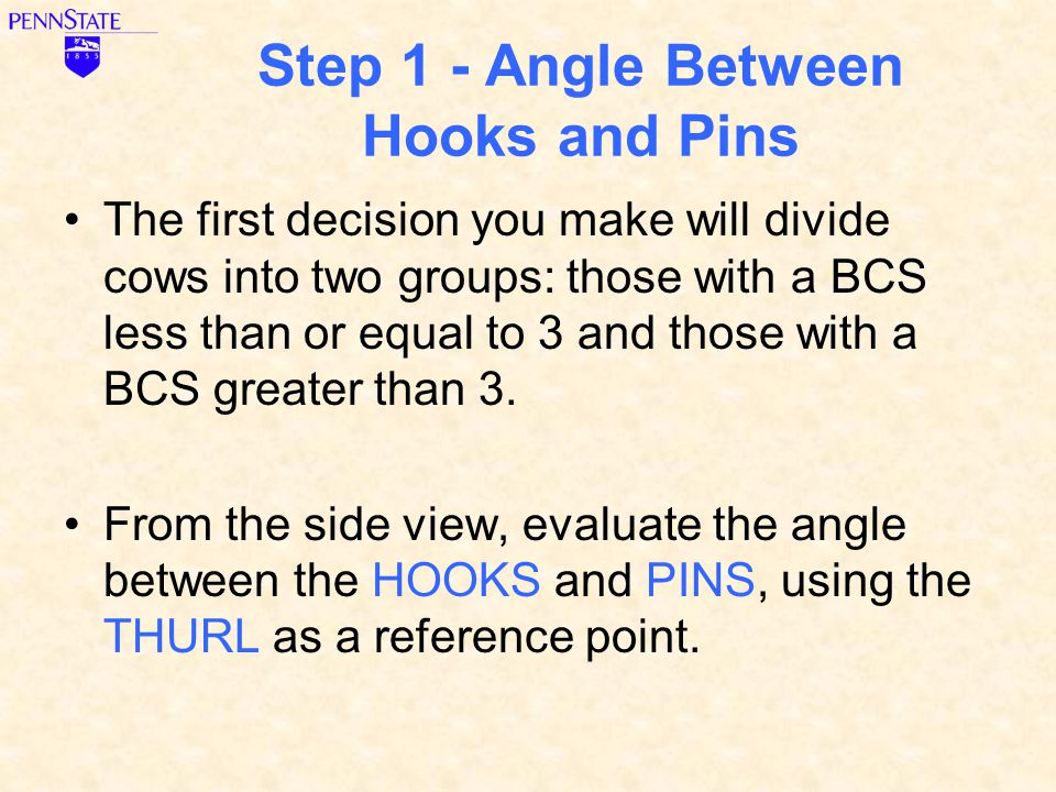 Step 1 - Angle Between Hooks and Pins