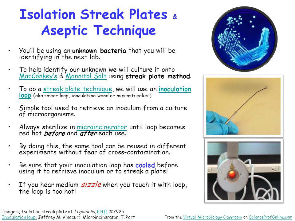 streak plate isolation Streak plate isolation for obtaining pure cultures data interpretation 1- in order to unsure that you get a pure sample 2-pure culture: laboratory culture containing a single species of organism.