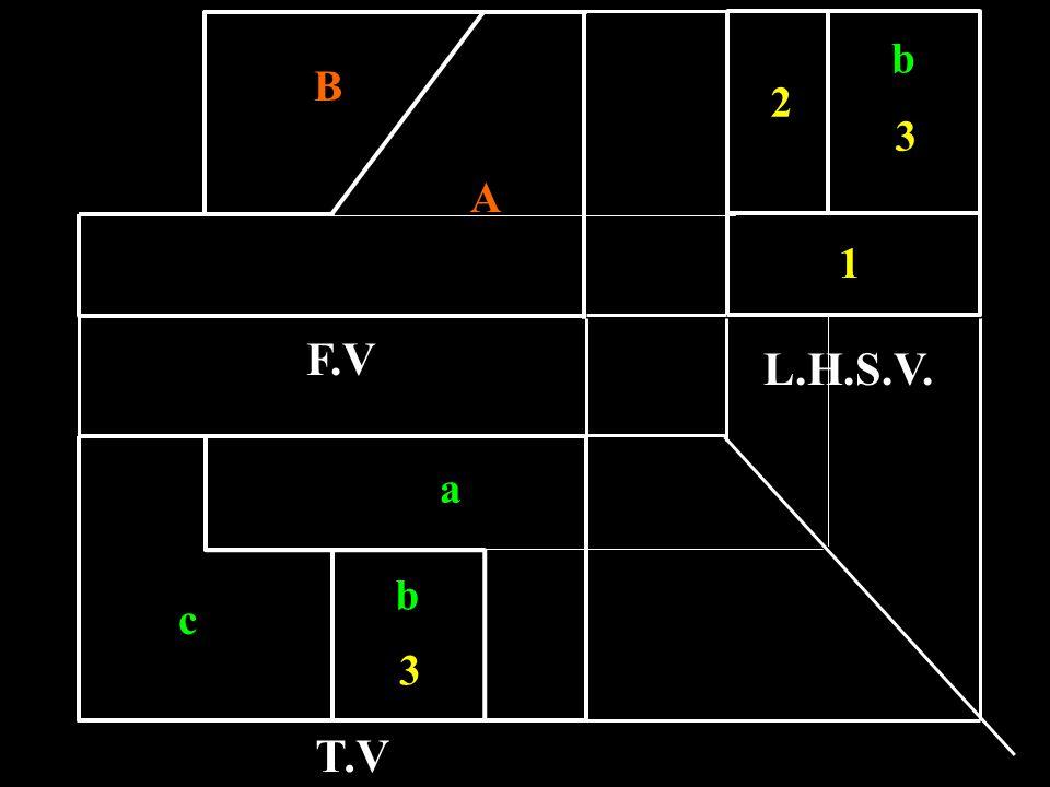 b B 2 3 A 1 F.V L.H.S.V. a b c 3 T.V