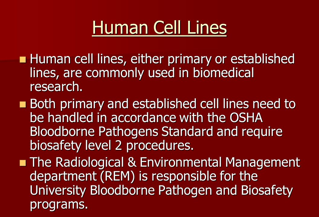 Human Cell Lines Human cell lines, either primary or established lines, are commonly used in biomedical research.