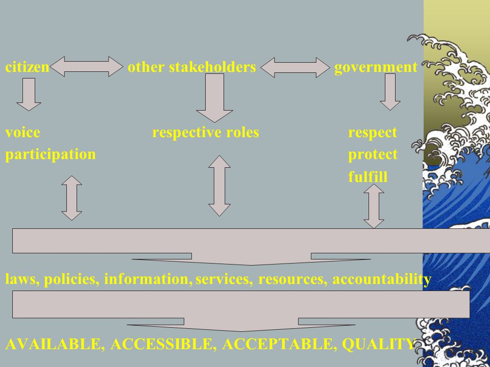citizen. other stakeholders government voice. respective roles