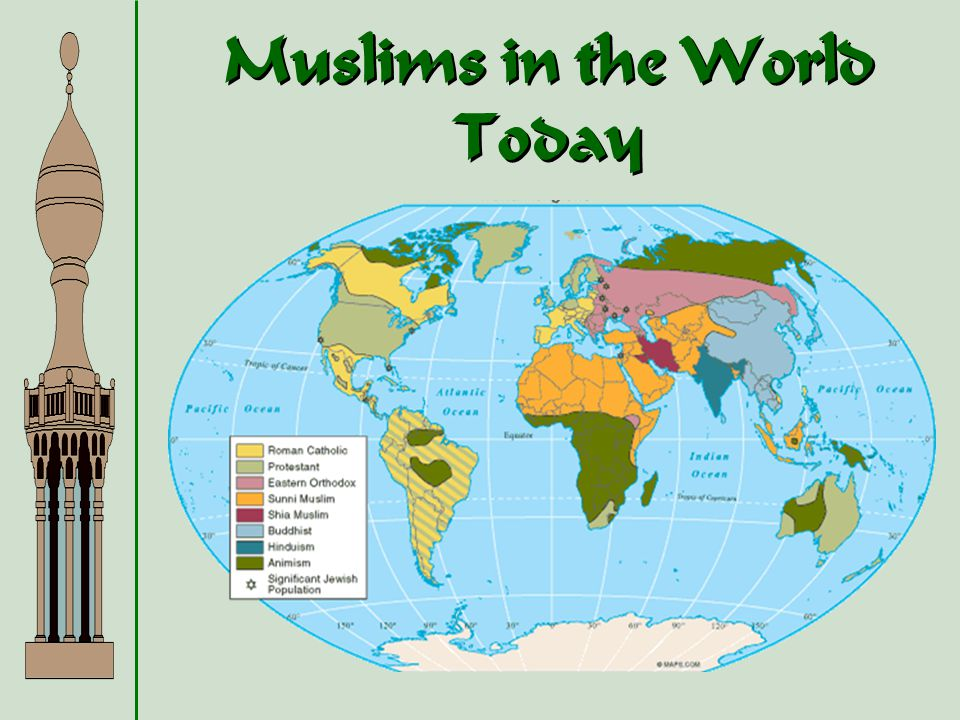 Muslims in the World Today