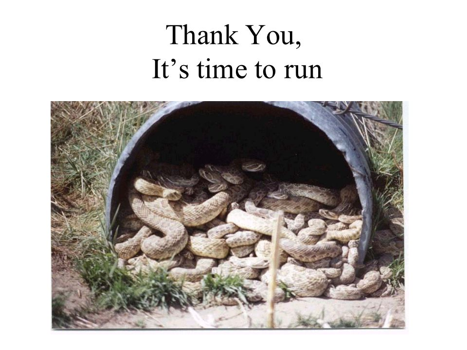 Thank You, It's time to run