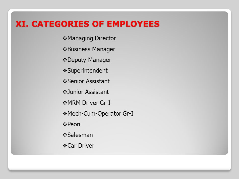 XI. CATEGORIES OF EMPLOYEES