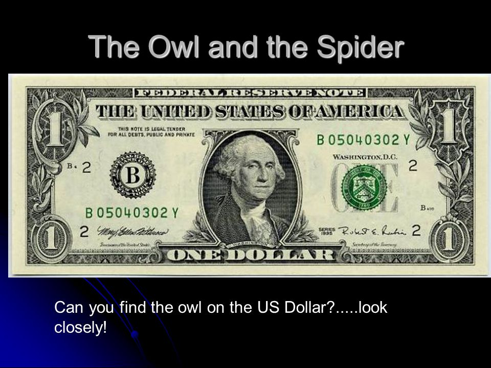 The Owl and the Spider Can you find the owl on the US Dollar .....look closely!