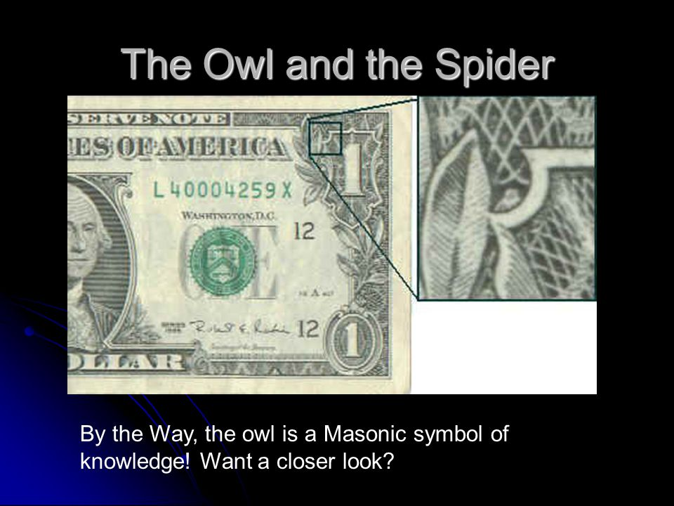 The Owl and the Spider By the Way, the owl is a Masonic symbol of knowledge! Want a closer look
