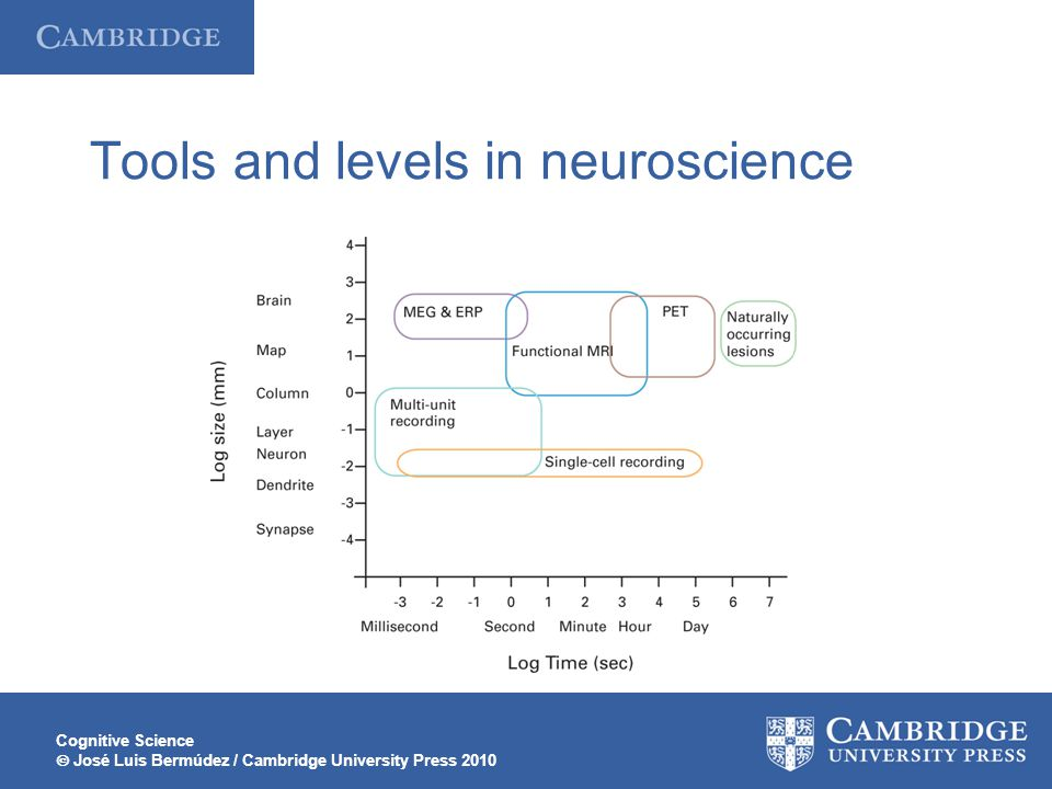 Tools and levels in neuroscience