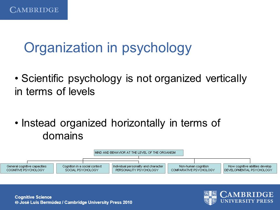 Organization in psychology