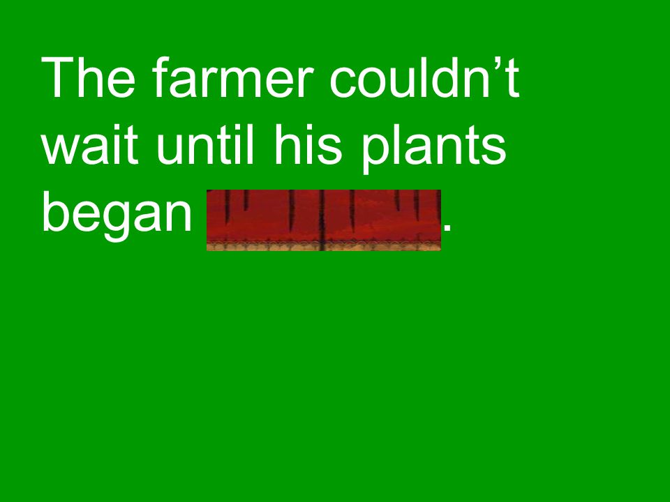 The farmer couldn't wait until his plants began sprouting.