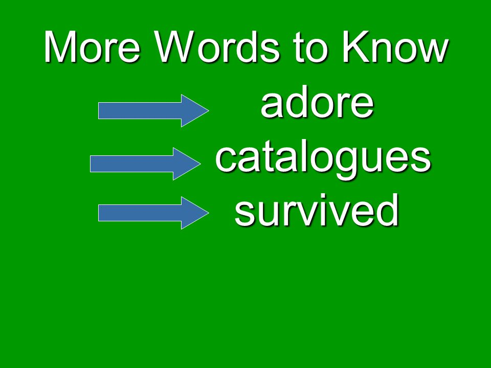 More Words to Know adore catalogues survived