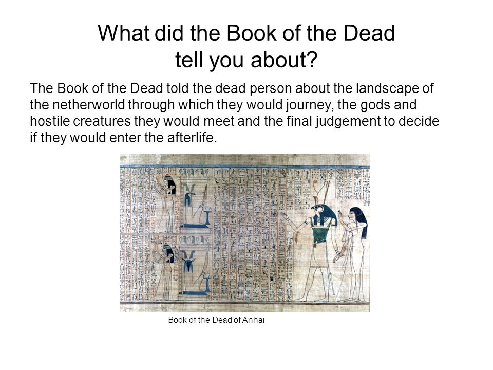 What did the Book of the Dead tell you about