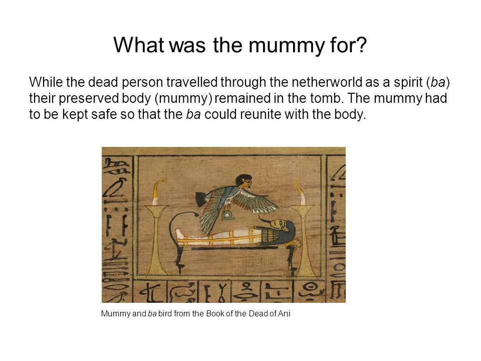 What was the mummy for