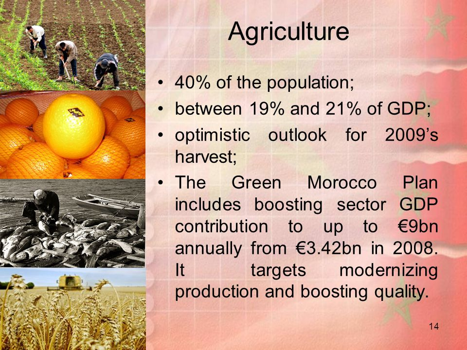 Agriculture 40% of the population; between 19% and 21% of GDP;