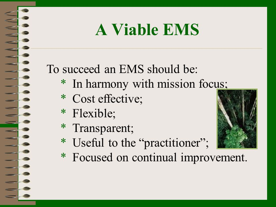 A Viable EMS To succeed an EMS should be: