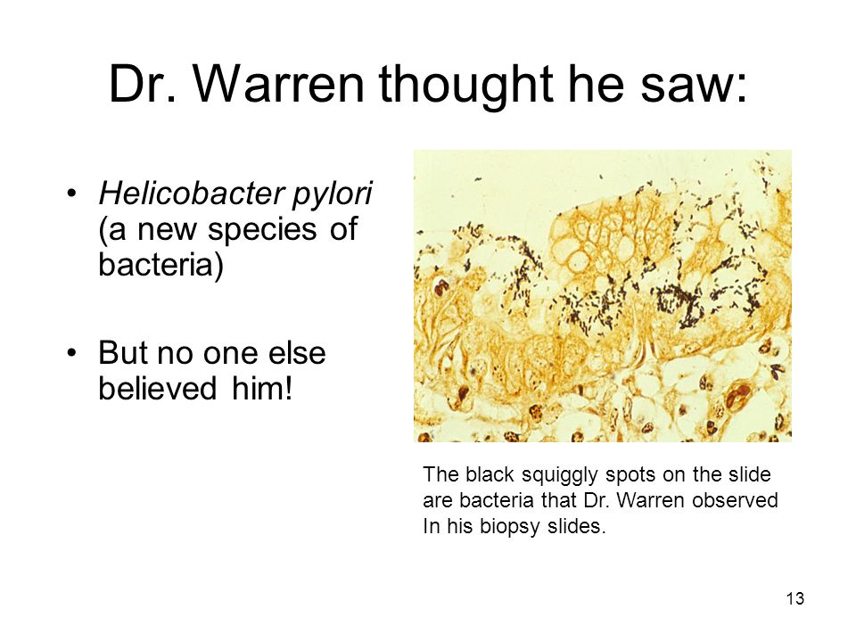 Dr. Warren thought he saw: