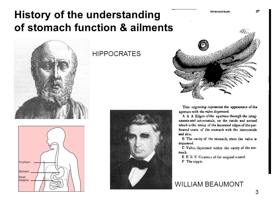 History of the understanding of stomach function & ailments