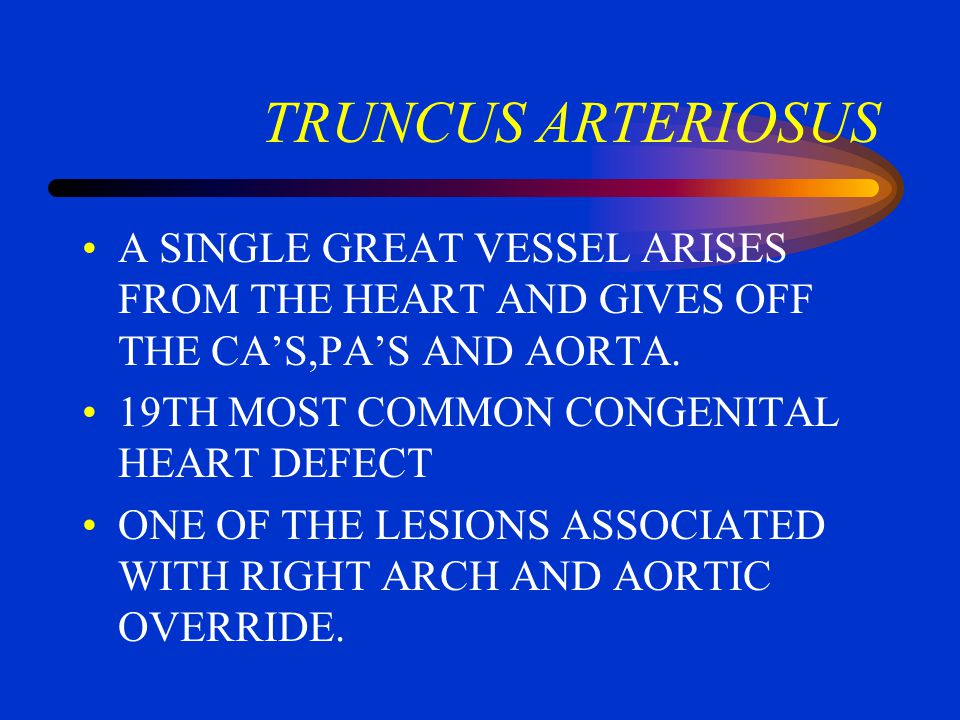 TRUNCUS ARTERIOSUS A SINGLE GREAT VESSEL ARISES FROM THE HEART AND GIVES OFF THE CA'S,PA'S AND AORTA.