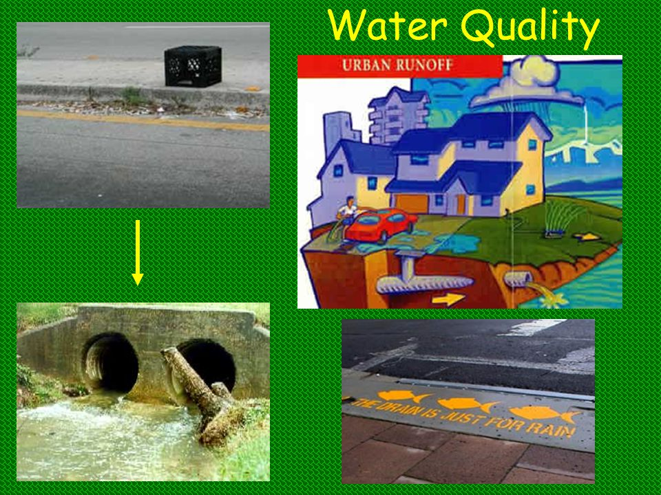 Water Quality An effective way to set the stage for this topic is to introduce a scenario like the one that follows: