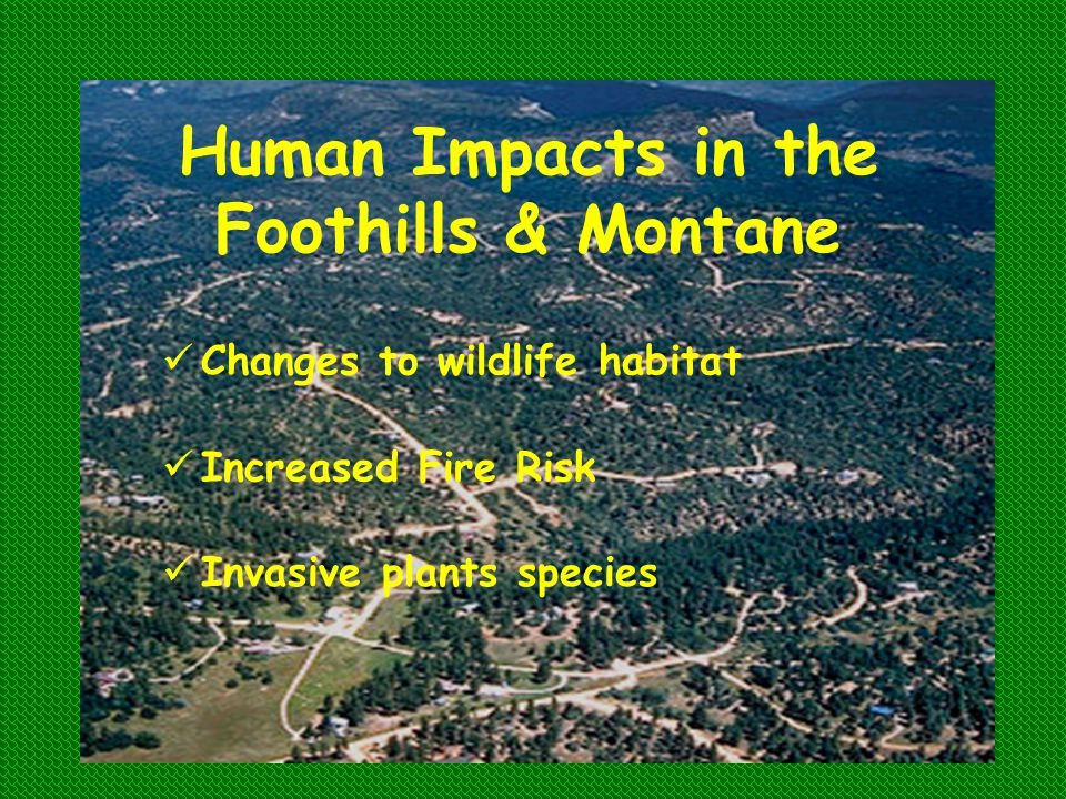 Human Impacts in the Foothills & Montane