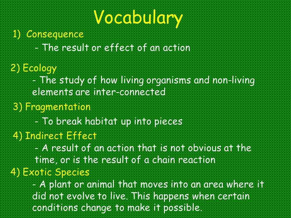 Vocabulary Consequence - The result or effect of an action 2) Ecology