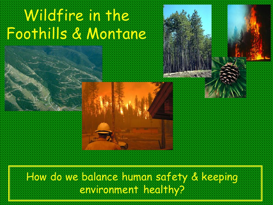 Wildfire in the Foothills & Montane