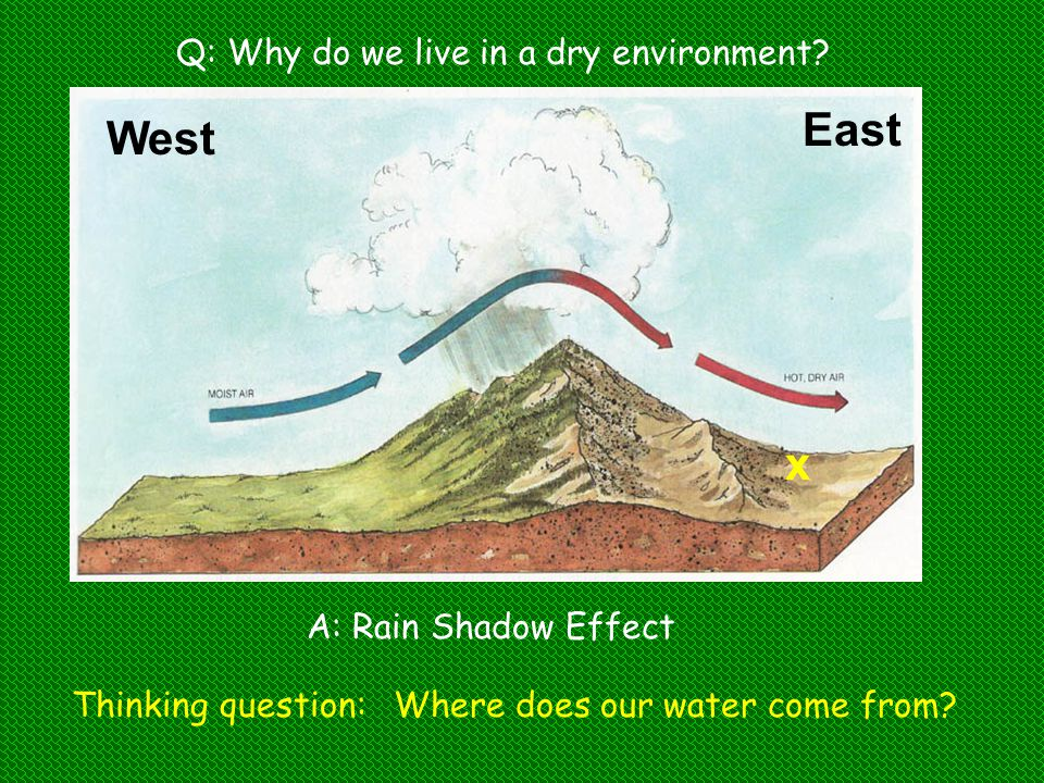 East West x Q: Why do we live in a dry environment