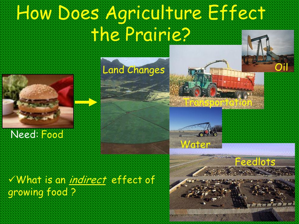 How Does Agriculture Effect the Prairie