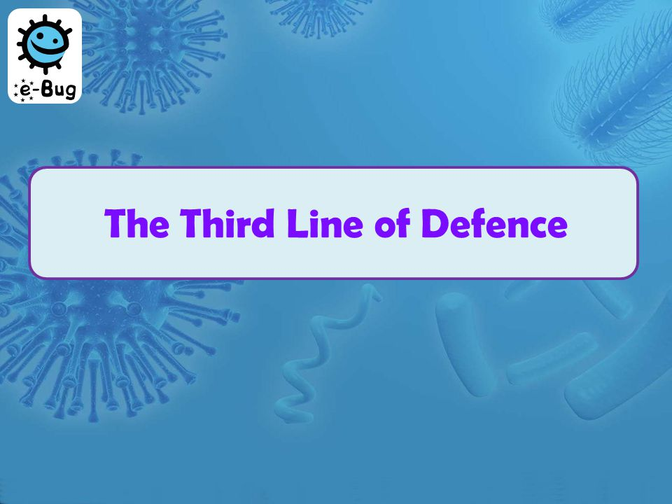 The Third Line of Defence