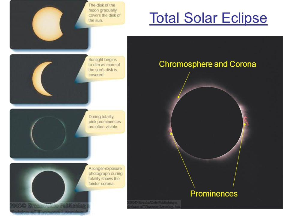 Total Solar Eclipse Chromosphere and Corona Prominences