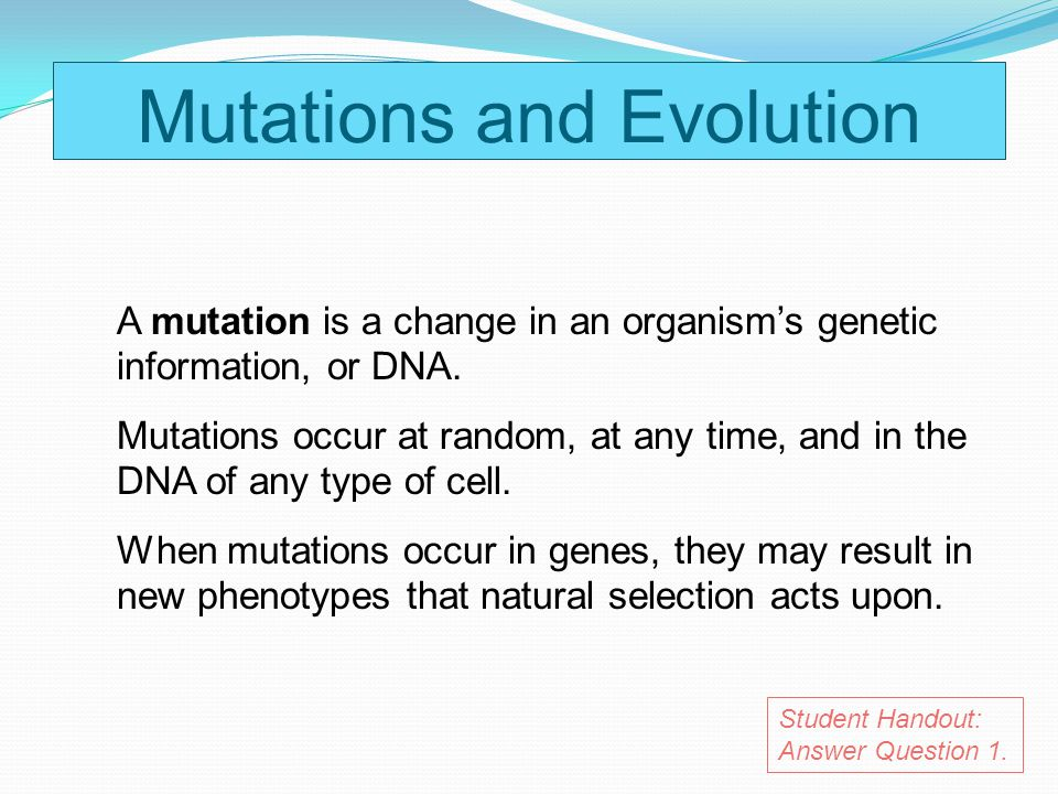 Natural Selection And Random Mutation