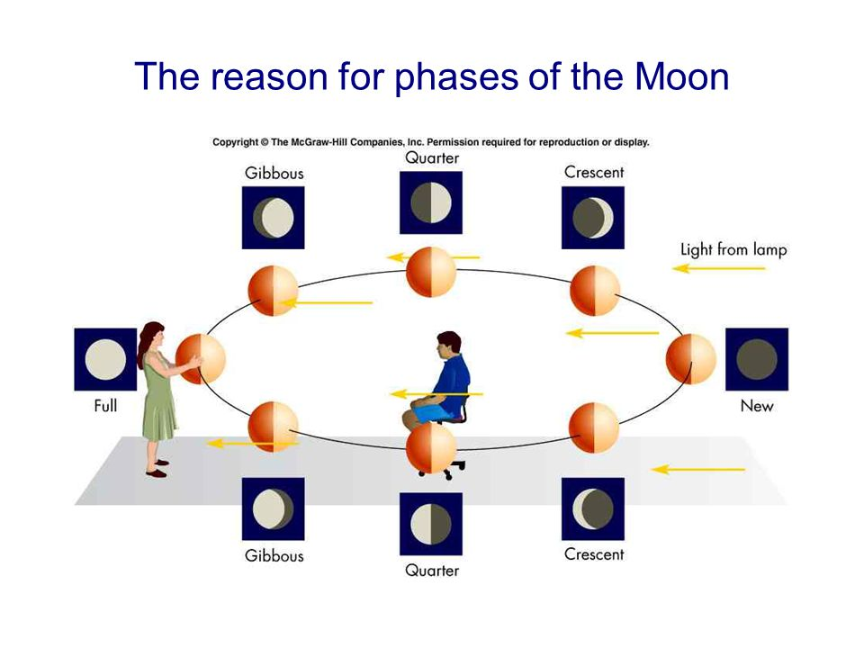 The reason for phases of the Moon