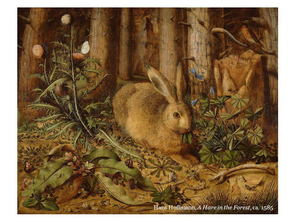 Hans Hoffmann, A Hare in the Forest, ca. 1585