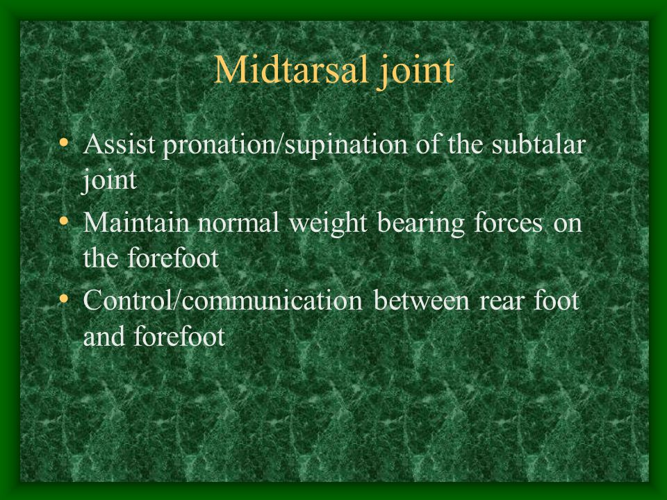 Midtarsal joint Assist pronation/supination of the subtalar joint