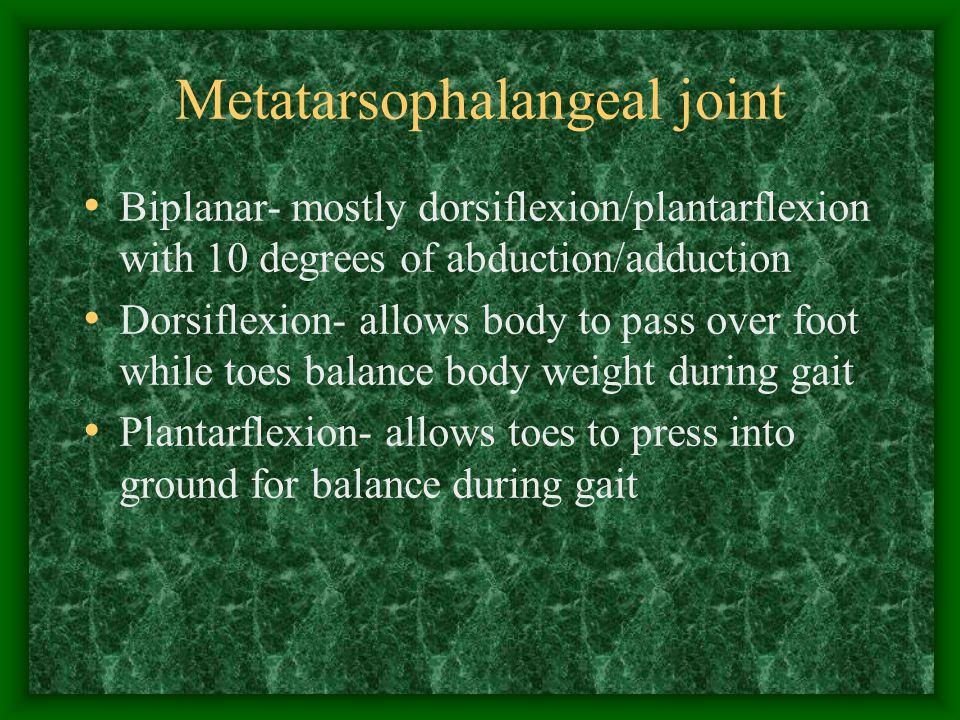 Metatarsophalangeal joint