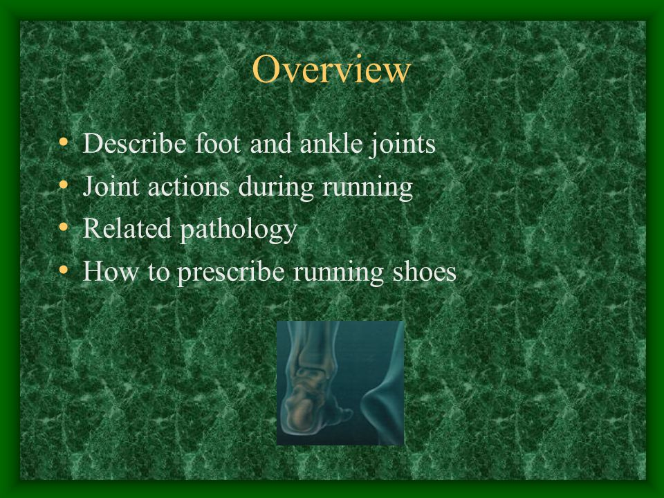 Overview Describe foot and ankle joints Joint actions during running