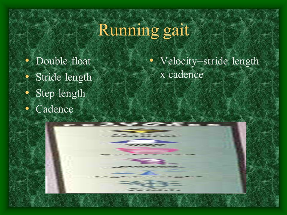 Running gait Double float Stride length Step length Cadence