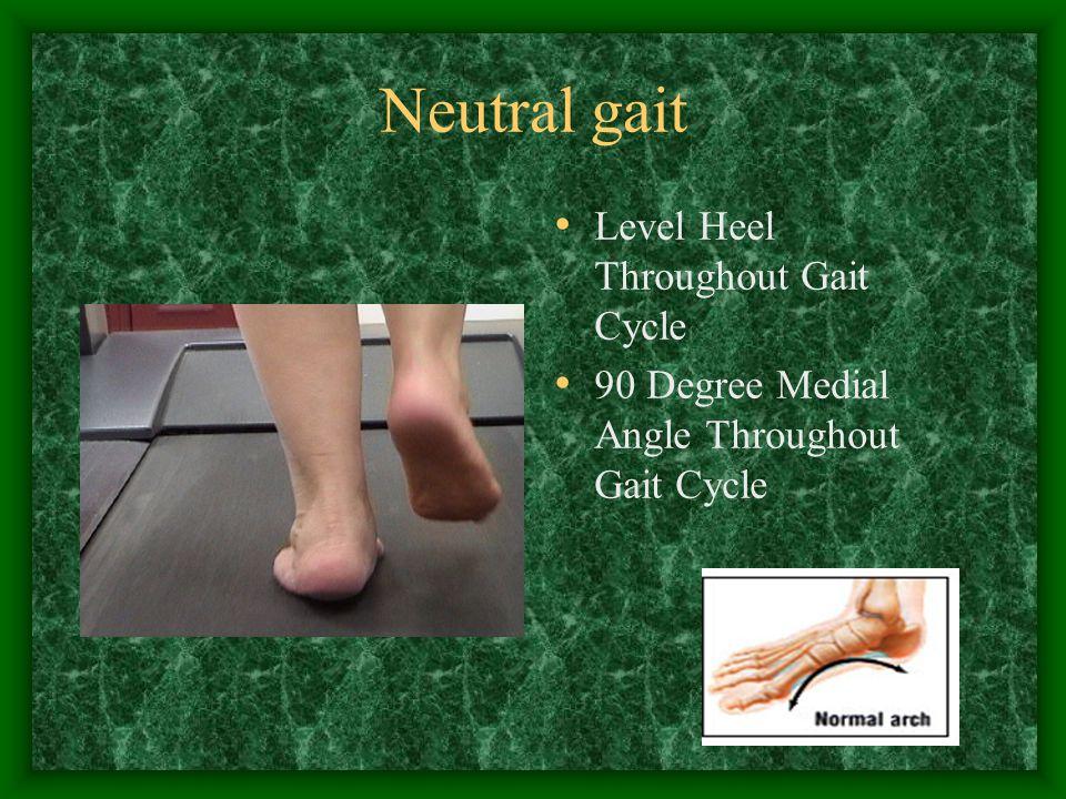 Neutral gait Level Heel Throughout Gait Cycle
