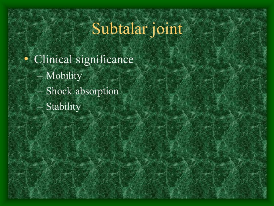 Subtalar joint Clinical significance Mobility Shock absorption