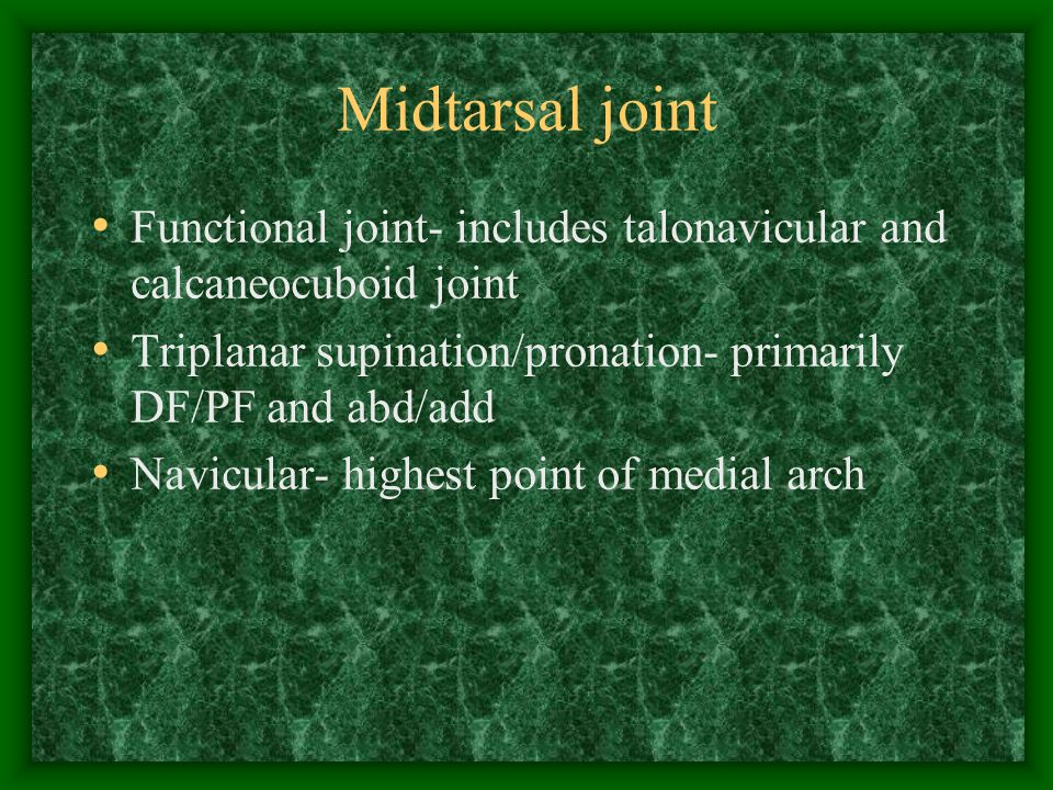 Midtarsal joint Functional joint- includes talonavicular and calcaneocuboid joint. Triplanar supination/pronation- primarily DF/PF and abd/add.
